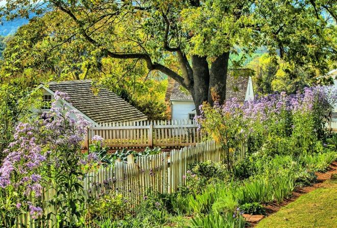 garden-191782_1280