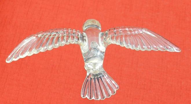 bird-315705_1280