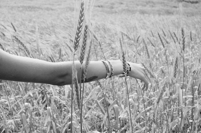wheat-925760_1280