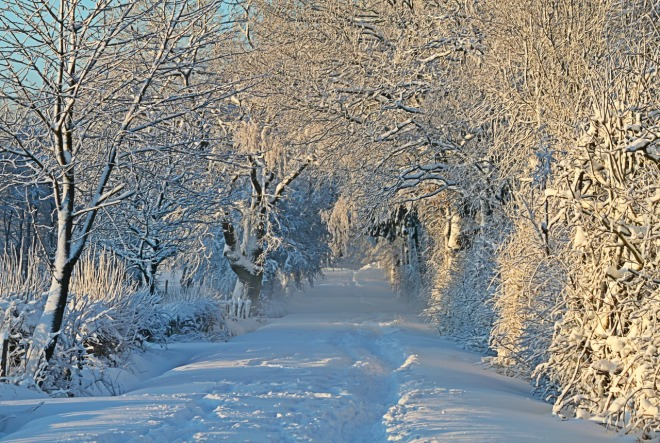 winter-1093798_1280