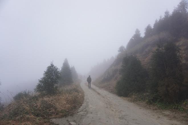 fog-1137072_1280