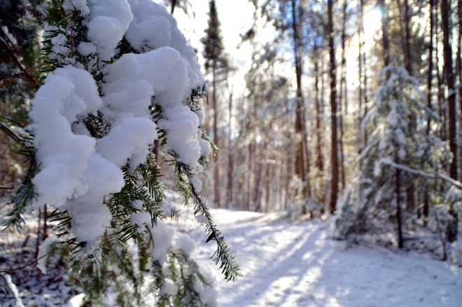 snow-1132569_1280