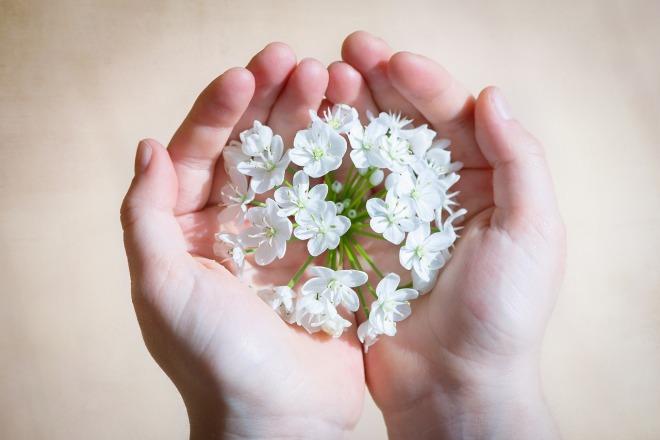 flower-1307578_1280