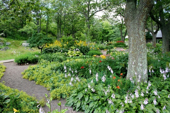 garden-56719_1280