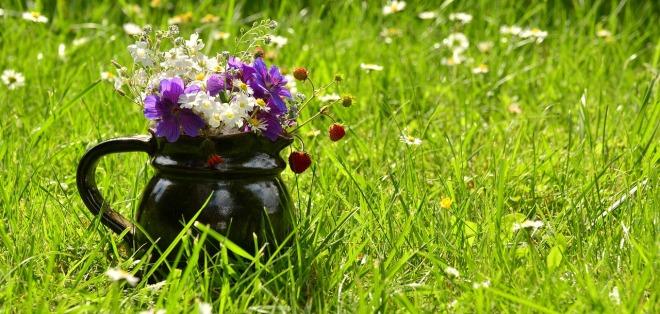flower-meadow-1448419_1280
