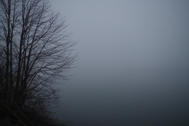 fog-1510925_1280