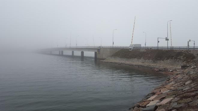 fog-1529230_1280