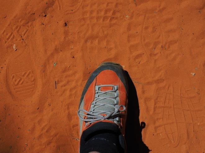 shoe-1521693_1280