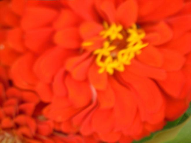 blur-and-distort-2