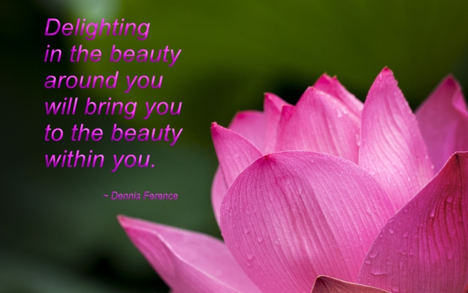 delighting-in-the-beauty